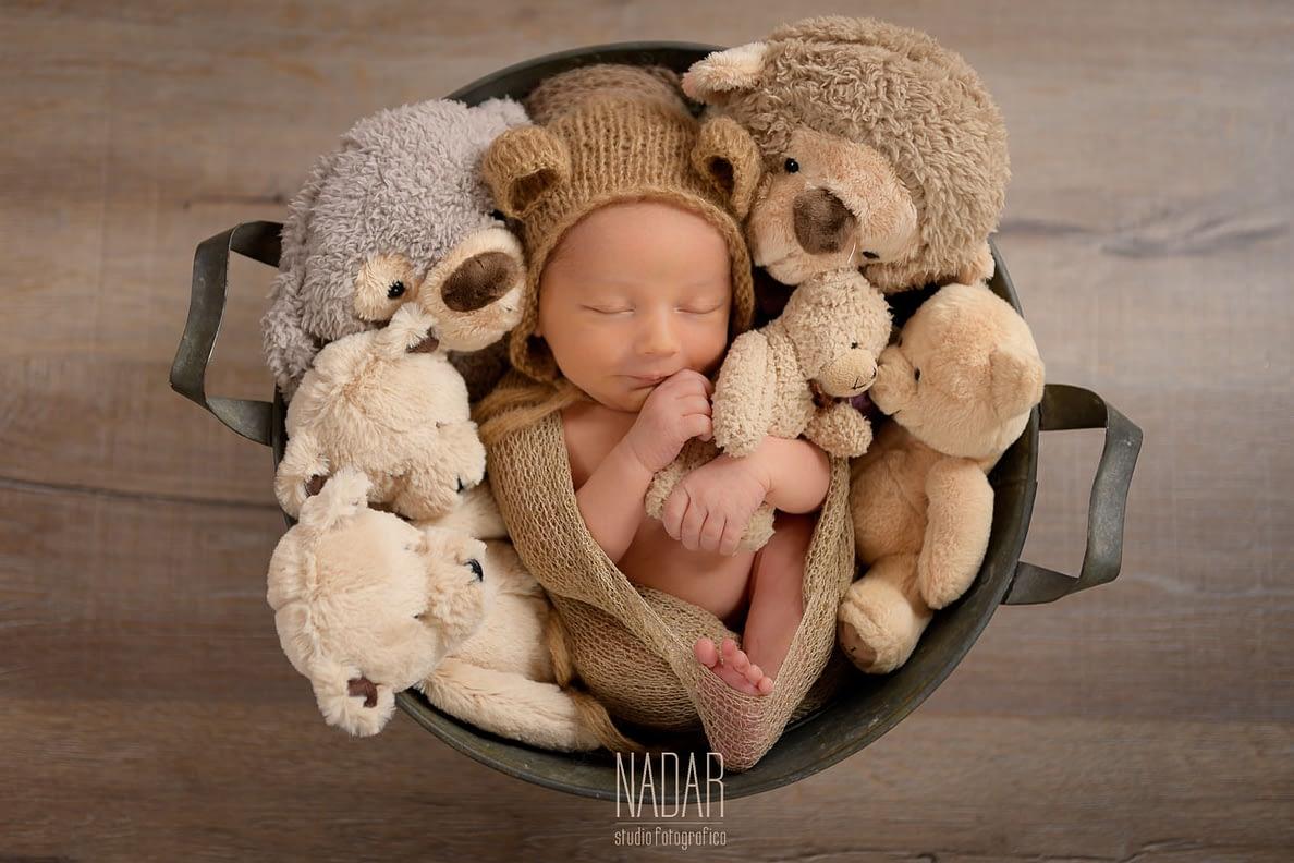 Gli orsetti tengono al sicuro il piccolo Devién